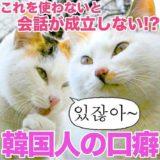 【例文付き】韓国人が会話でよく使う口癖の韓国語フレーズ